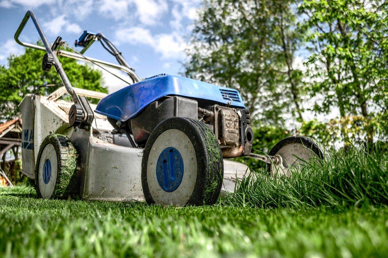 Die Sache mit dem Gras